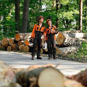 Schutzausstattung / Forstbekleidung
